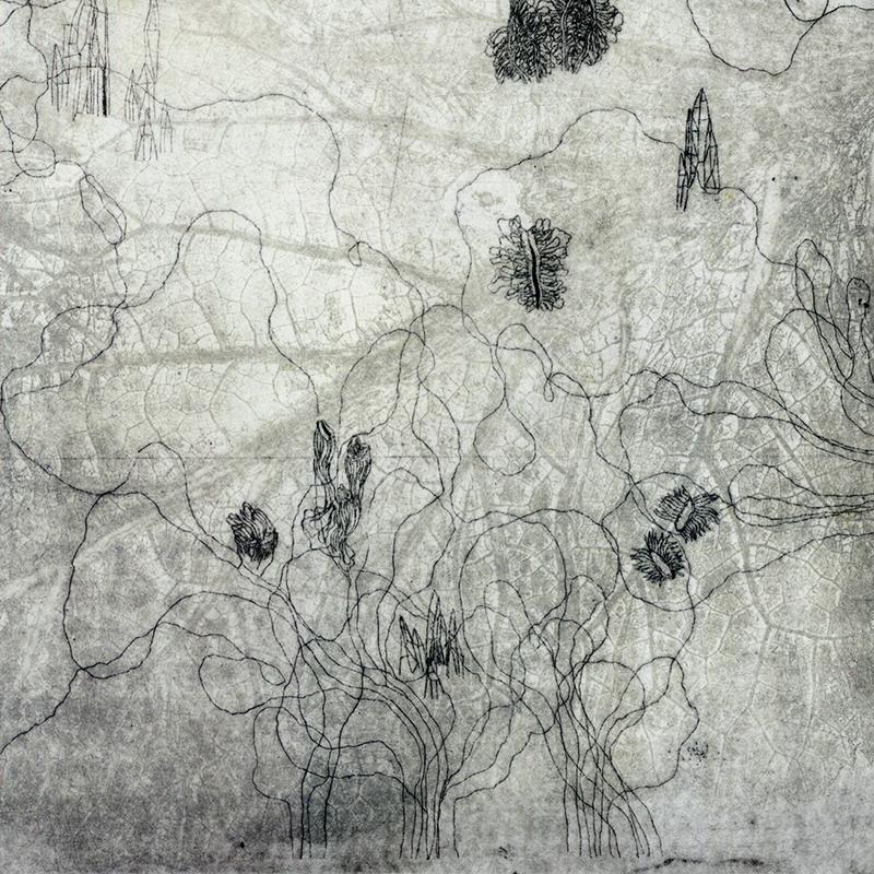 sentieriweb